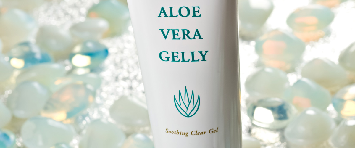 Image Result For Where To Buy An Aloe Vera Plant